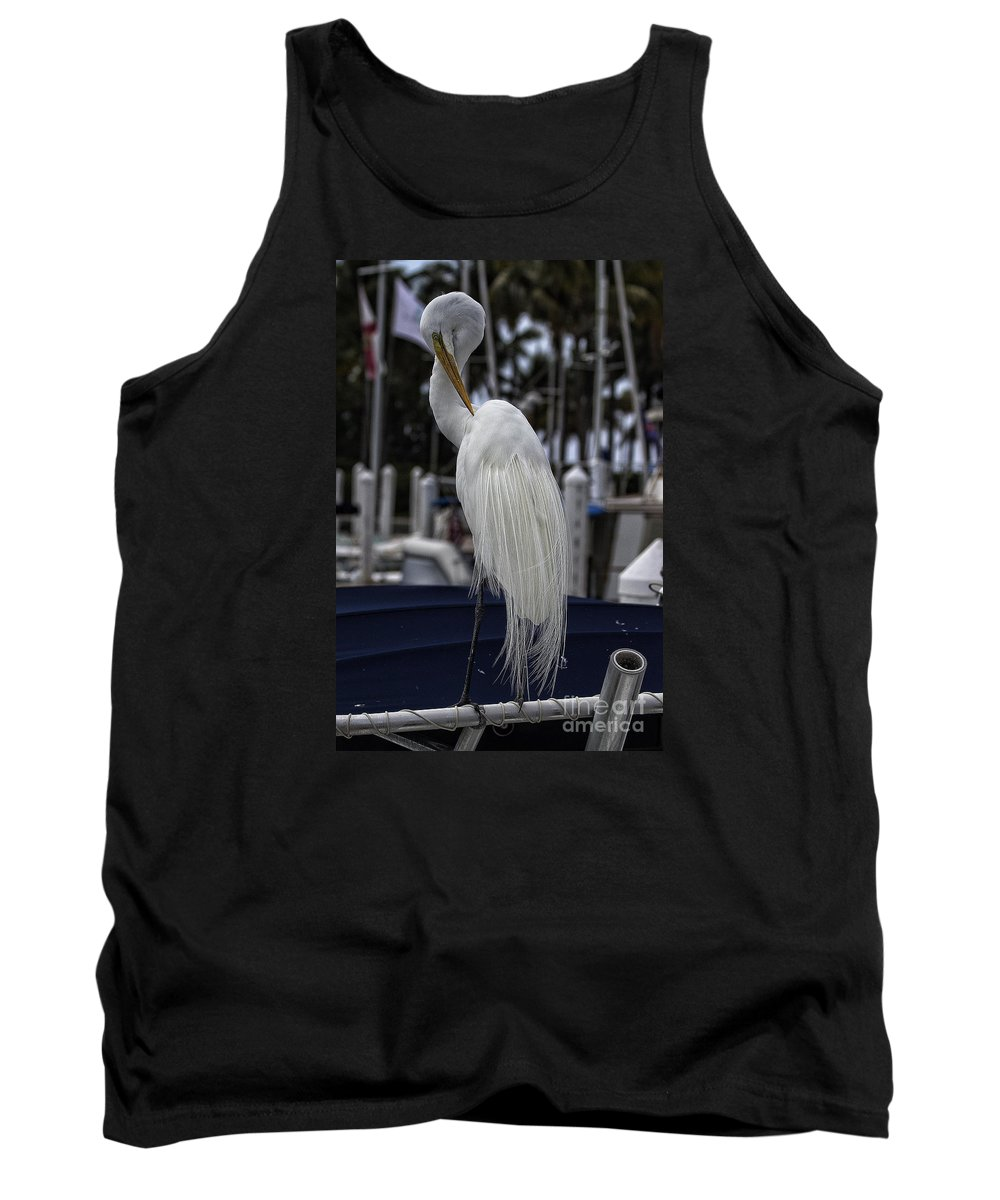 Heron Tank Top featuring the photograph Harbor Life by Richard Gripp