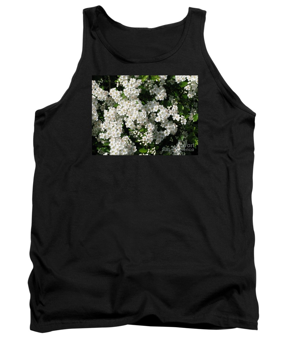 Hawthorn Tank Top featuring the photograph Hawthorn In Bloom by Ann Horn