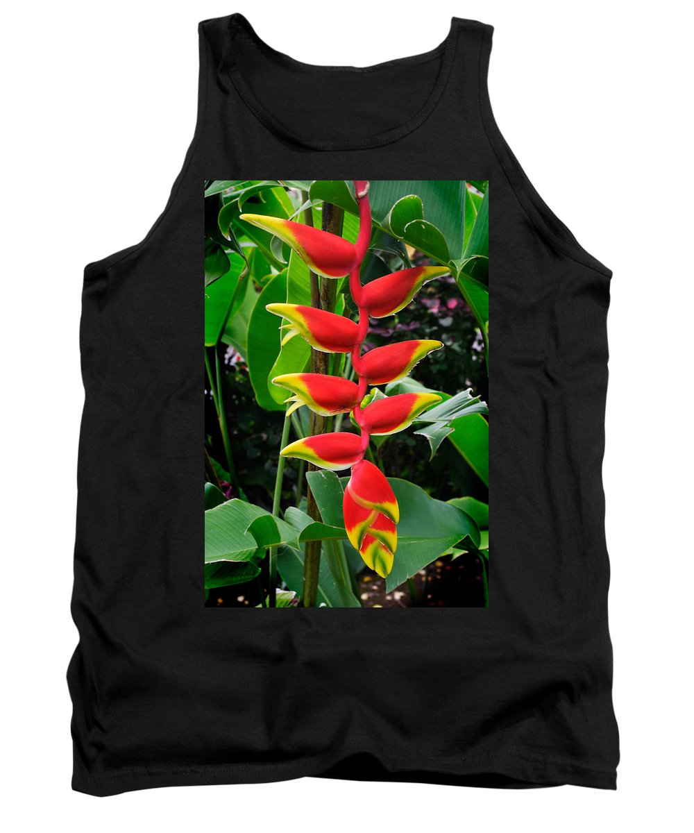 Tropical Tank Top featuring the photograph Heliconia Rostrata 2 - A Blooming Heliconia Rostrata Flower by Nature Photographer