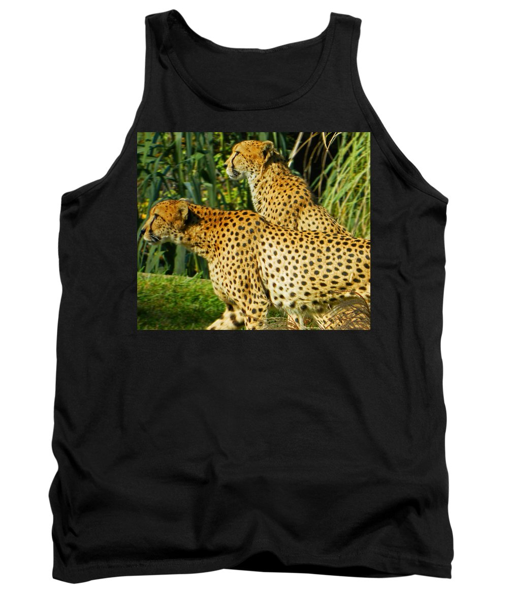 Hey Bro - Do You See What I See? Tank Top featuring the photograph Hey Bro - Do You See What I See? by Emmy Vickers