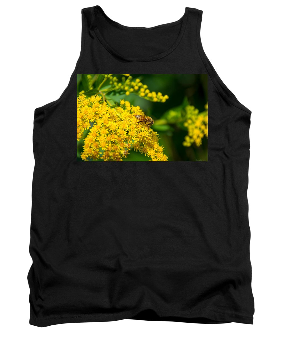 South Dakota Tank Top featuring the photograph Honeybee On Yellow by M Dale