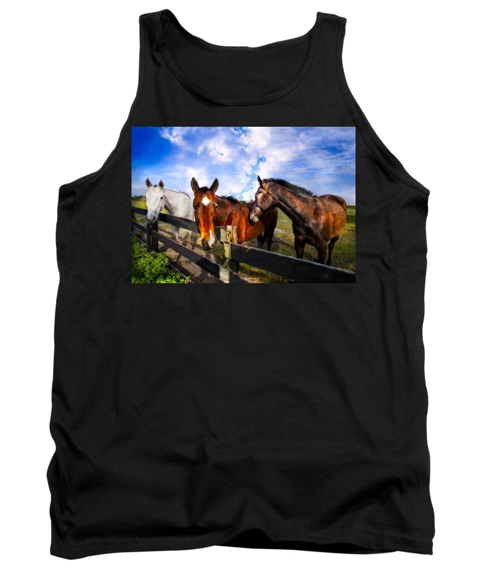 Animals Tank Top featuring the photograph Horses At The Fence by Debra and Dave Vanderlaan