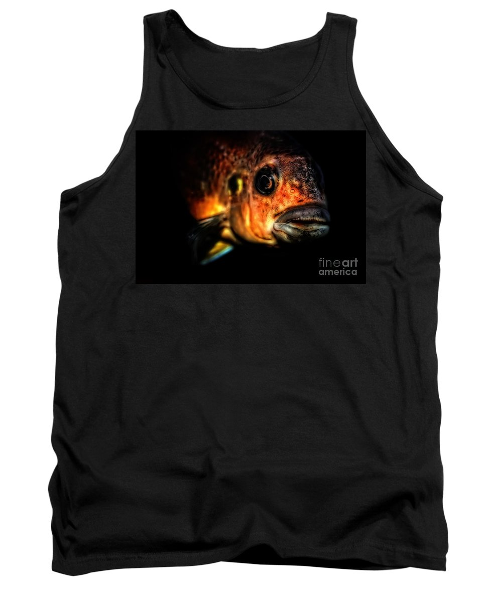 Fish Tank Top featuring the photograph I Am Watching You Too by Olga Hamilton