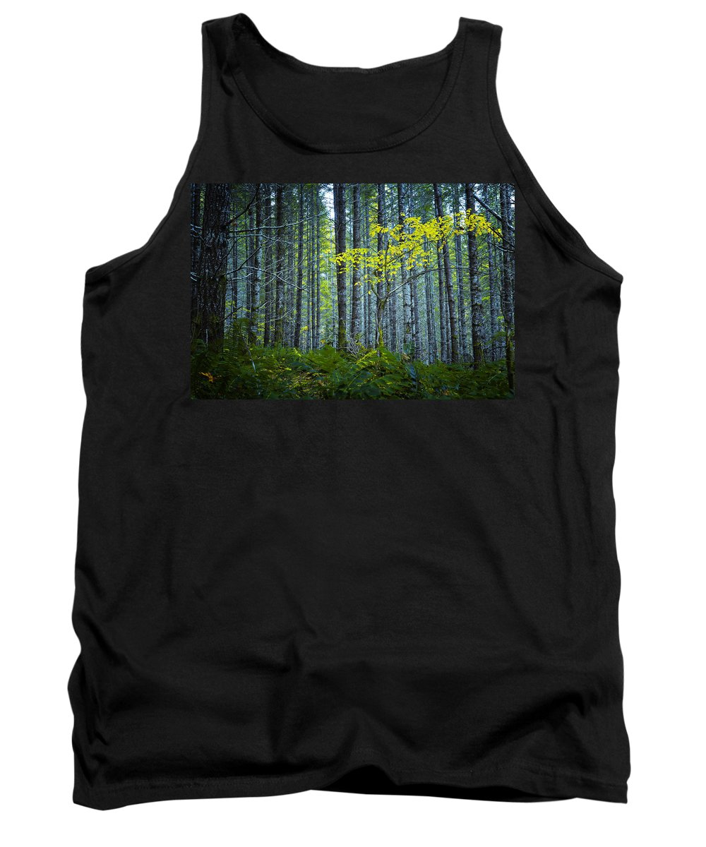 Woods Tank Top featuring the photograph In The Woods by Belinda Greb