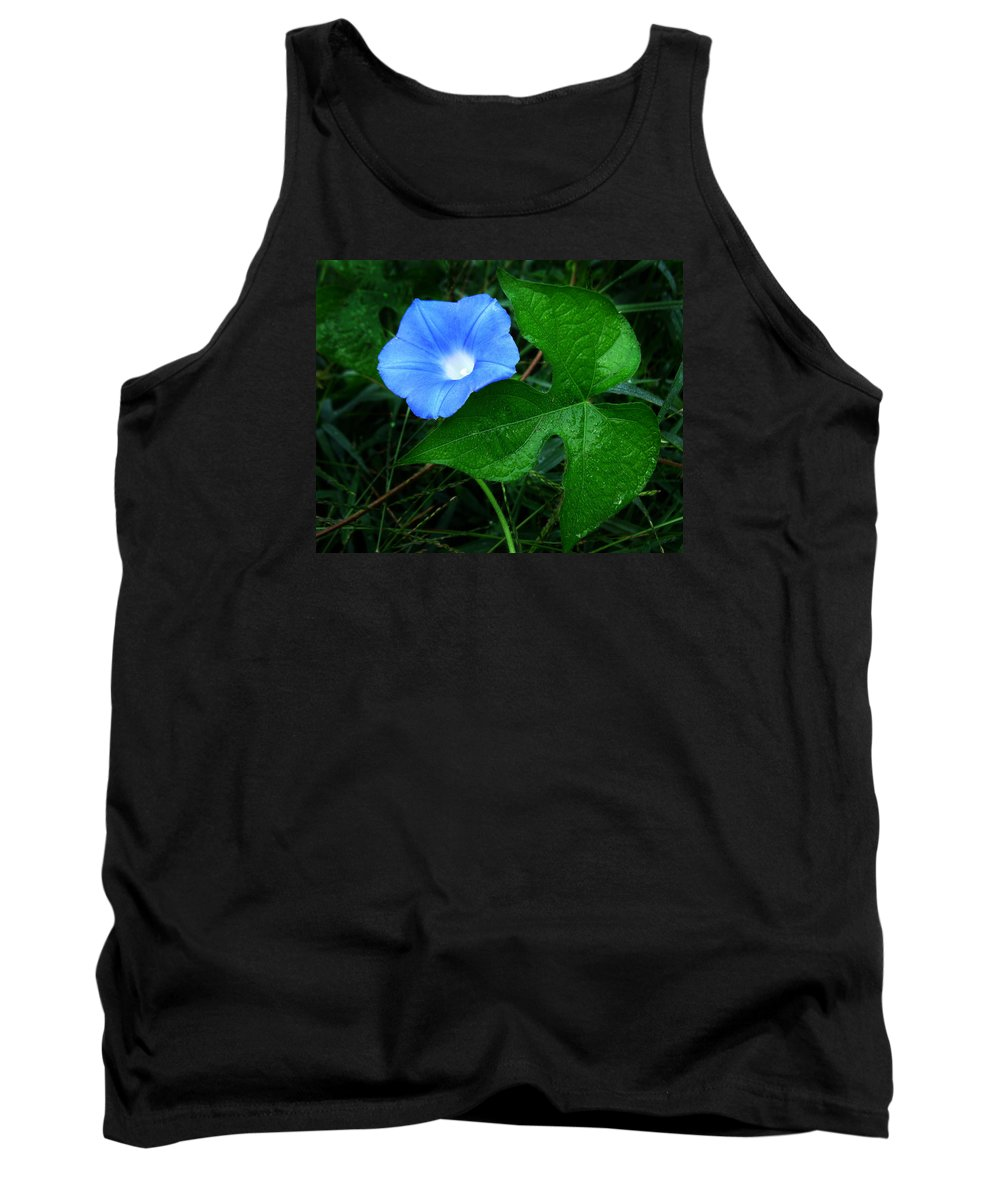 Ipomoea Hederacea Tank Top featuring the photograph Wild Ivyleaf Morning Glory by William Tanneberger