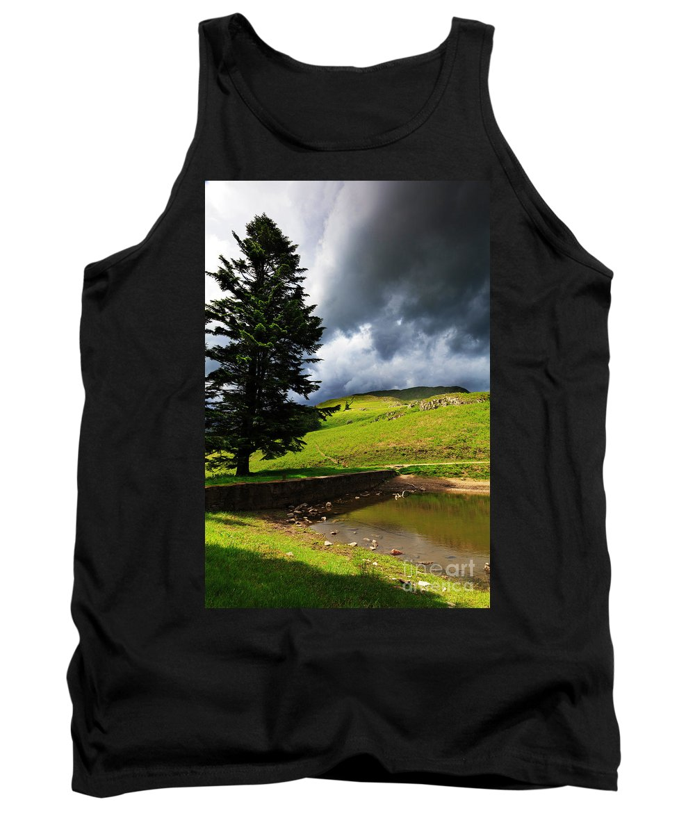 Lanty's Tarn Tank Top featuring the photograph Lanty's Tarn On A Stormy Afternoon by Louise Heusinkveld