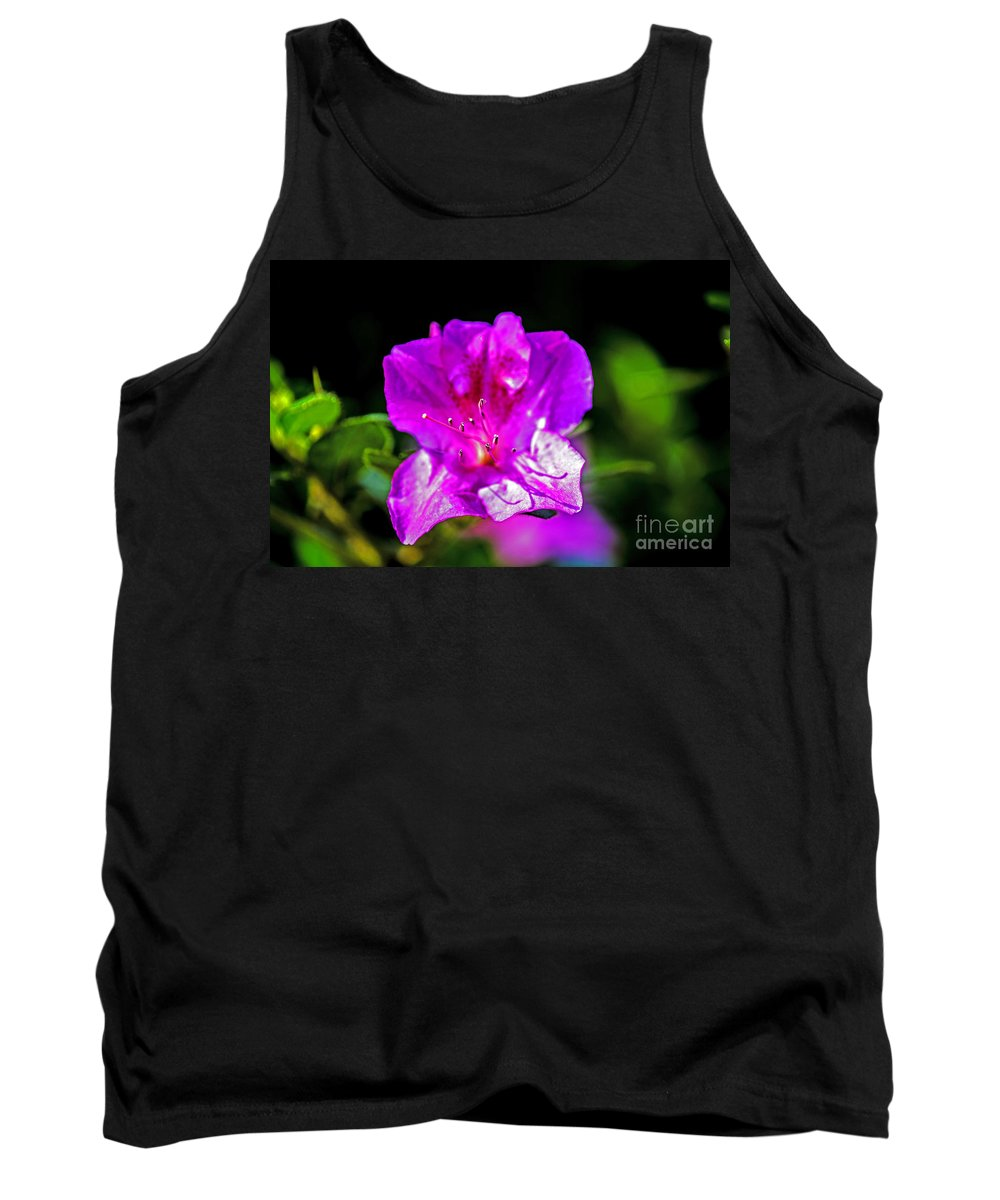 Landscape Tank Top featuring the photograph Lavendar Beauty by Elvis Vaughn