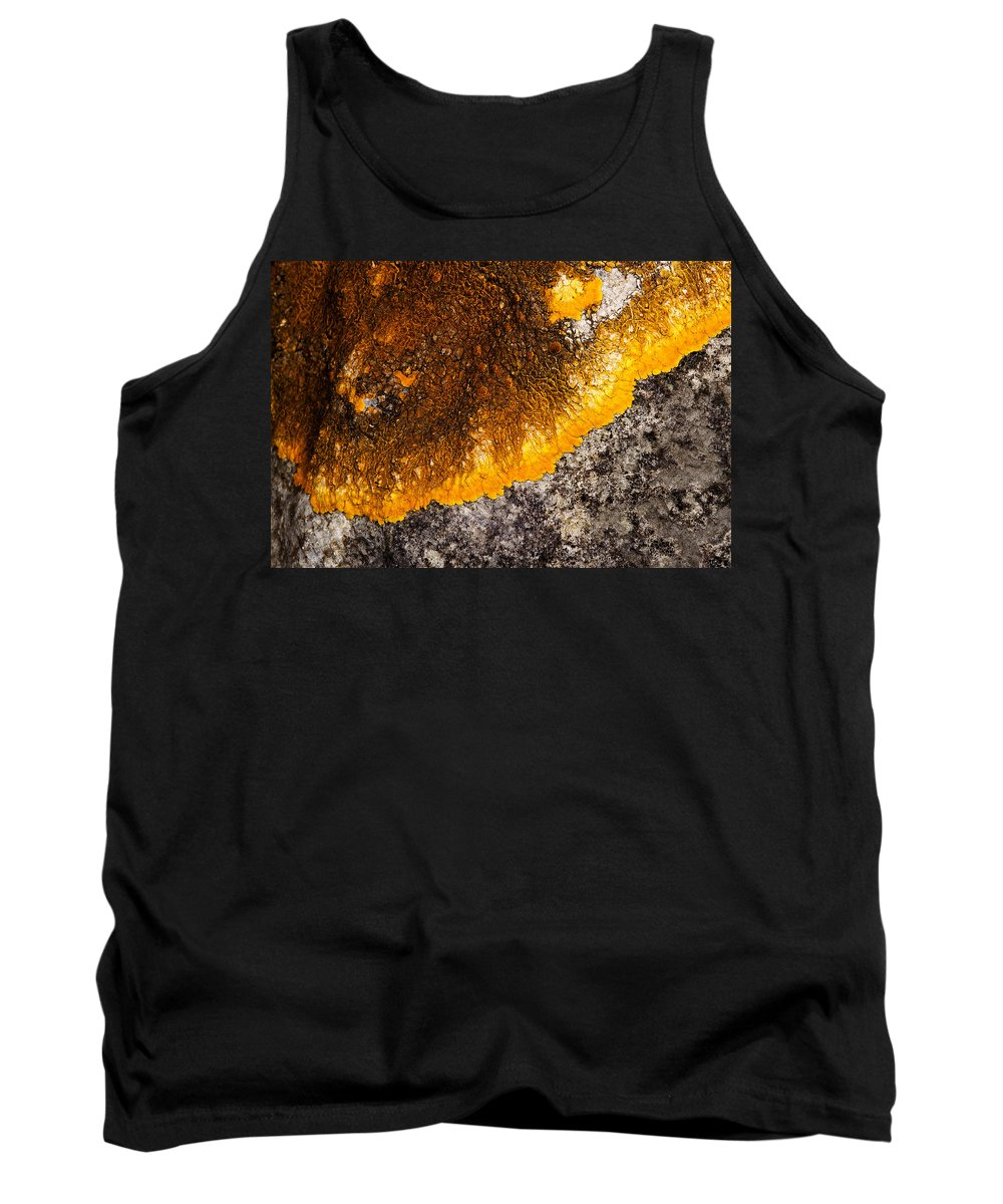 Lichens Tank Top featuring the photograph Lichen It by Bob Kemp