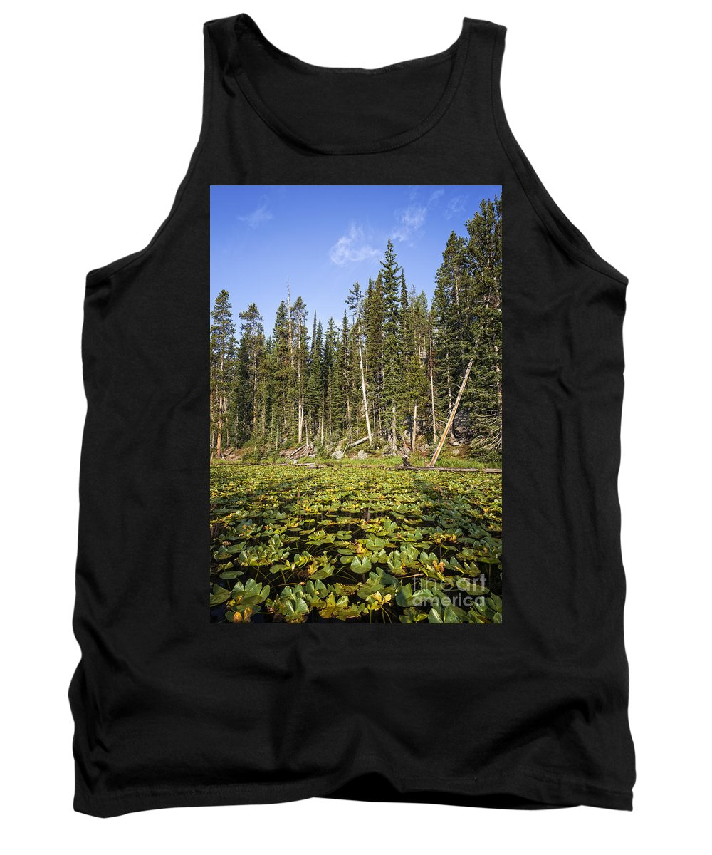 Isa Lake Tank Top featuring the photograph Lily Pads On Isa Lake by Bryan Mullennix