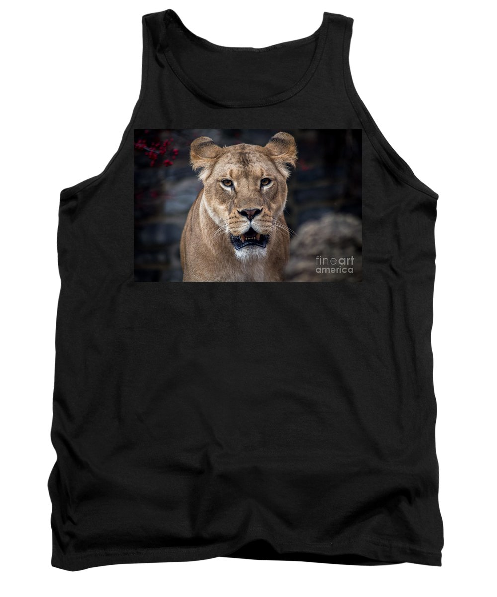Lion Tank Top featuring the photograph Lioness by David Rucker