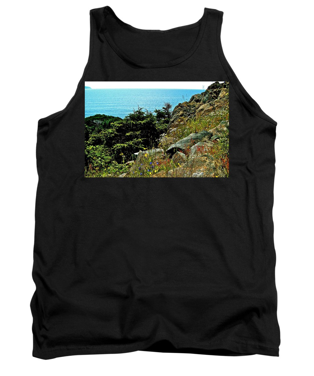 Lobster Cove Head In Gros Morne Np Tank Top featuring the photograph Lobster Cove Head In Gros Morne Np-nl by Ruth Hager