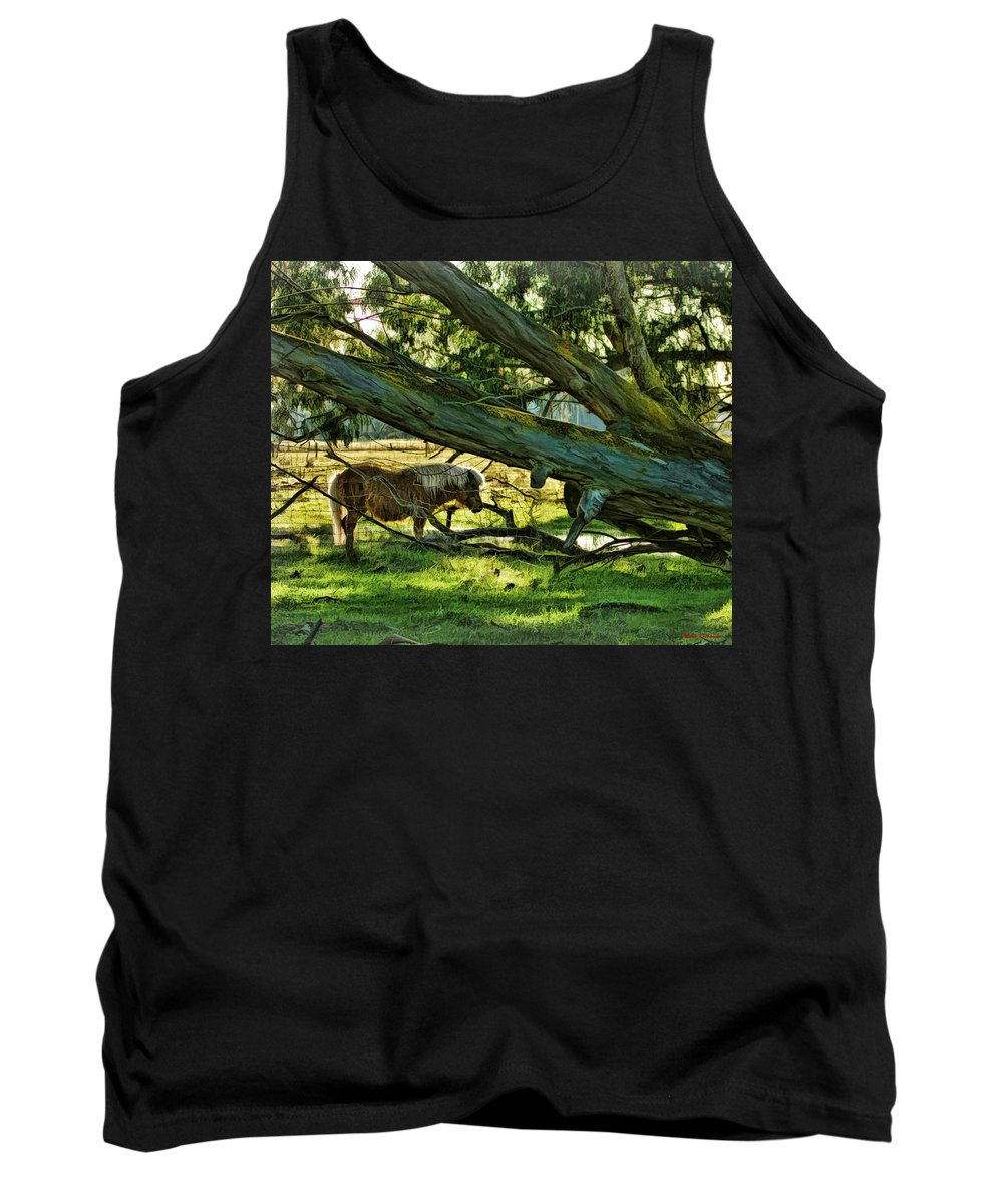 Art Photography Tank Top featuring the photograph Lone Pony by Blake Richards