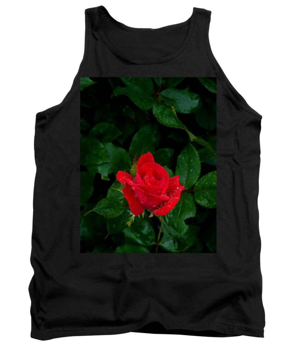 Flower Tank Top featuring the photograph Lonely Rose by Benjamin Reed