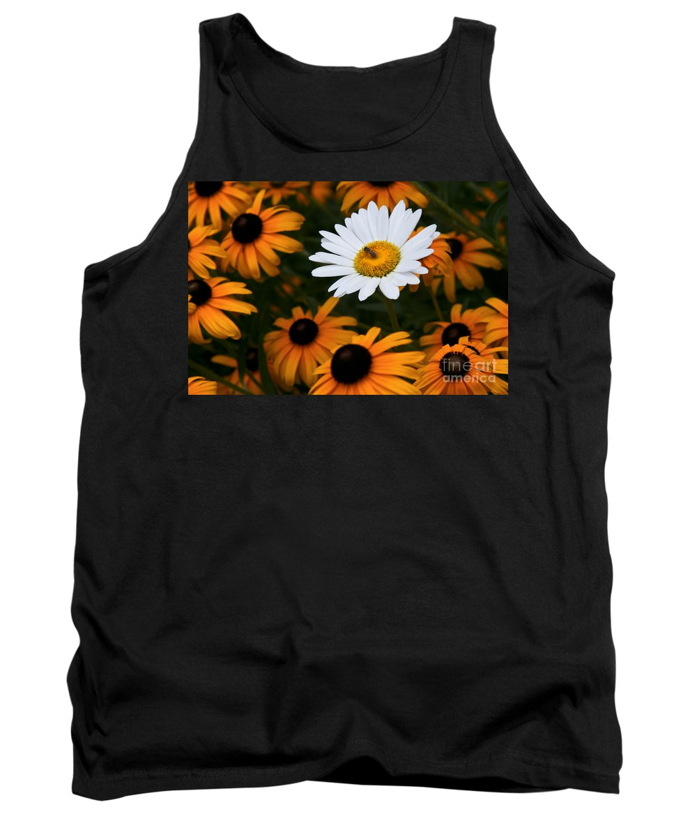 Daisy Daisies Bee Yellow Orange White Tank Top featuring the photograph Loner by Karl Greeson