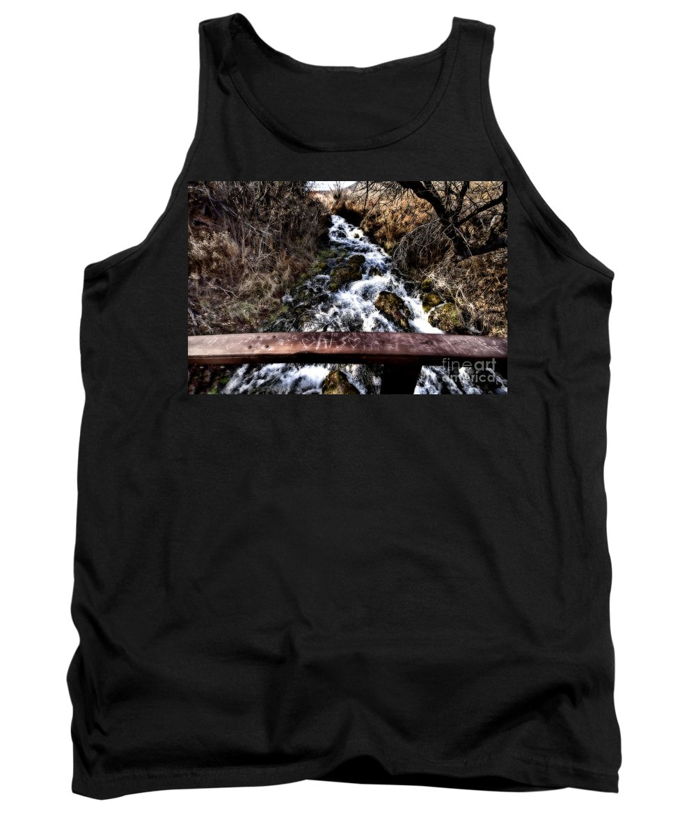 Ice Tank Top featuring the photograph Love Engraved V3 by Douglas Barnard