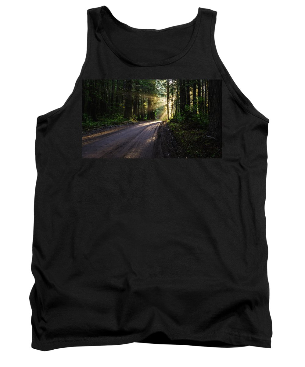 God Rays Tank Top featuring the photograph Magic Of Redwood by Vishwanath Bhat