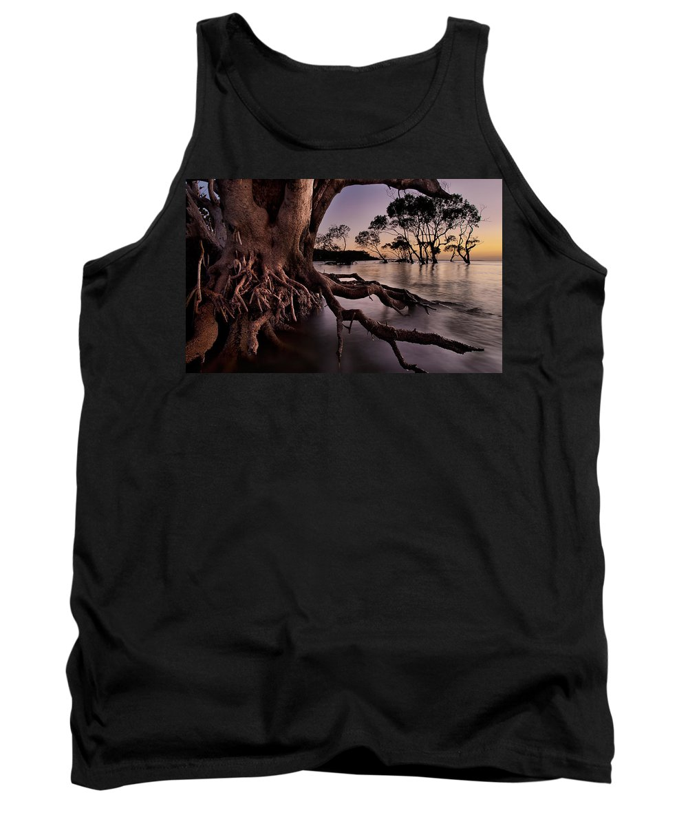 2012 Tank Top featuring the photograph Mangrove Roots by Robert Charity