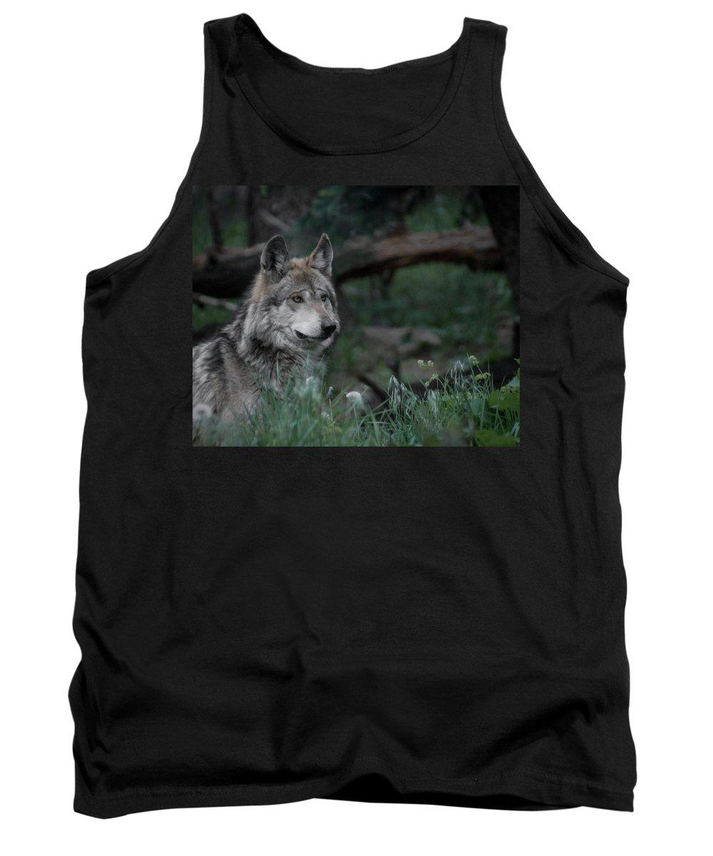 Wolf Tank Top featuring the digital art Mexican Grey Wolf by Ernie Echols