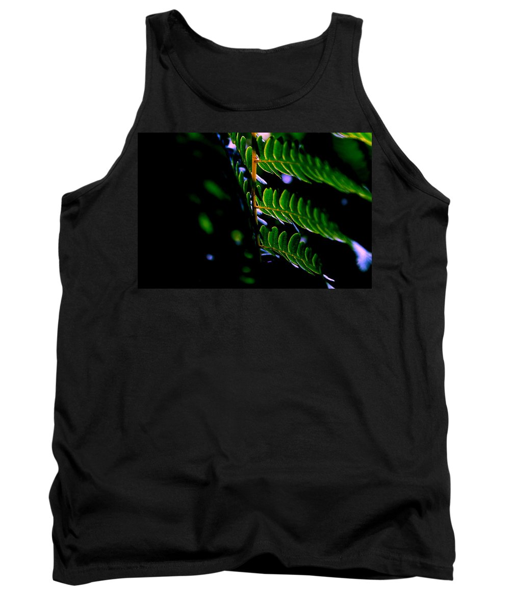 Fern Tank Top featuring the photograph Midnight Green by Neal Eslinger