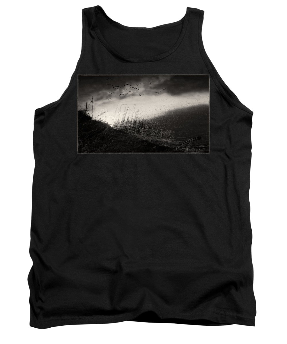 Britannia Shipyard Vancouver Tank Top featuring the photograph Moody Sunrise With Grasses And Birds by Peter v Quenter