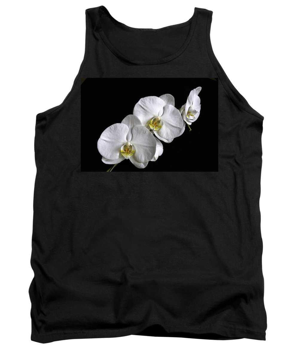 White Moth Orchid Tank Top featuring the photograph Moth Orchid Trio by Ron White