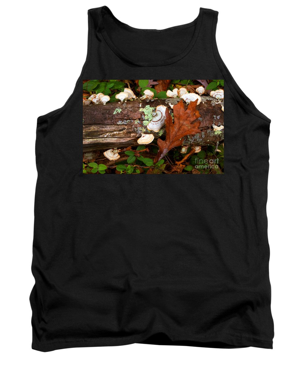 Mushroom Tank Top featuring the photograph Mushrooms And Leaf by Paul W Faust - Impressions of Light