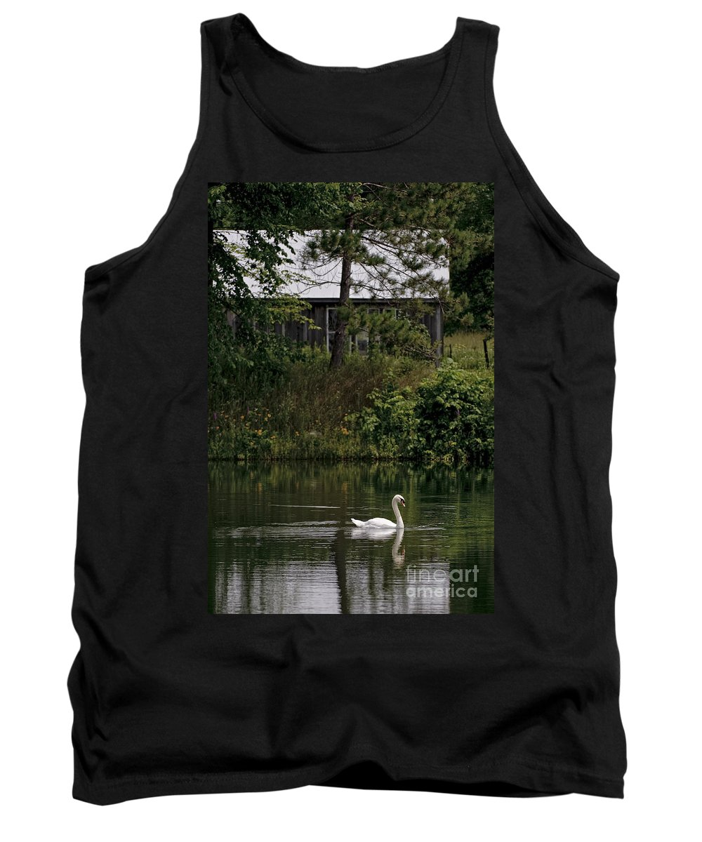 Mute Swan Tank Top featuring the photograph Mute Swan Pictures 199 by World Wildlife Photography
