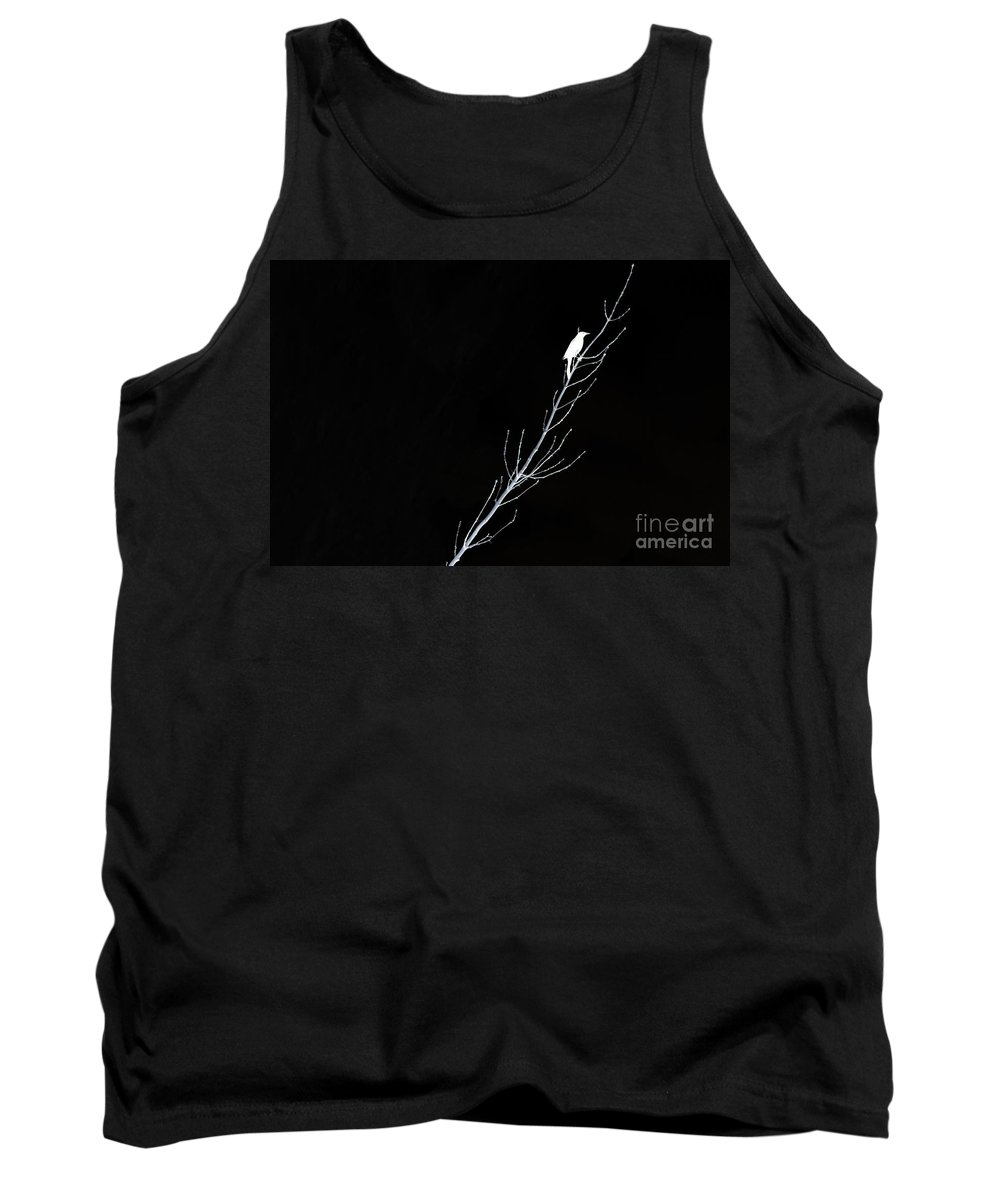 Bird Tank Top featuring the photograph Negative State Of Mind by Andrea Kollo