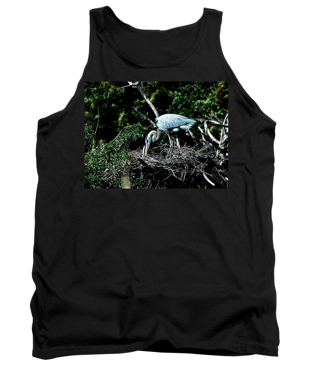 Great Blue Heron Tank Top featuring the photograph Nesting Season by Norman Johnson