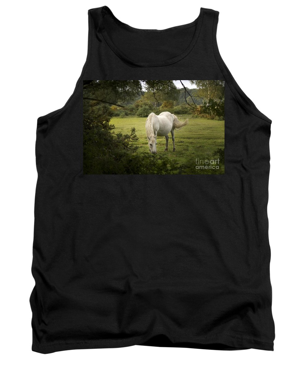 New Forest Tank Top featuring the photograph New Forest Pony by Angel Ciesniarska