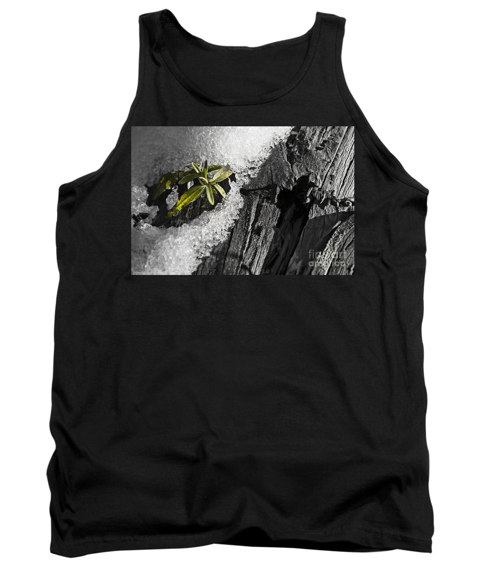 New Tank Top featuring the photograph New Life by Douglas Barnard