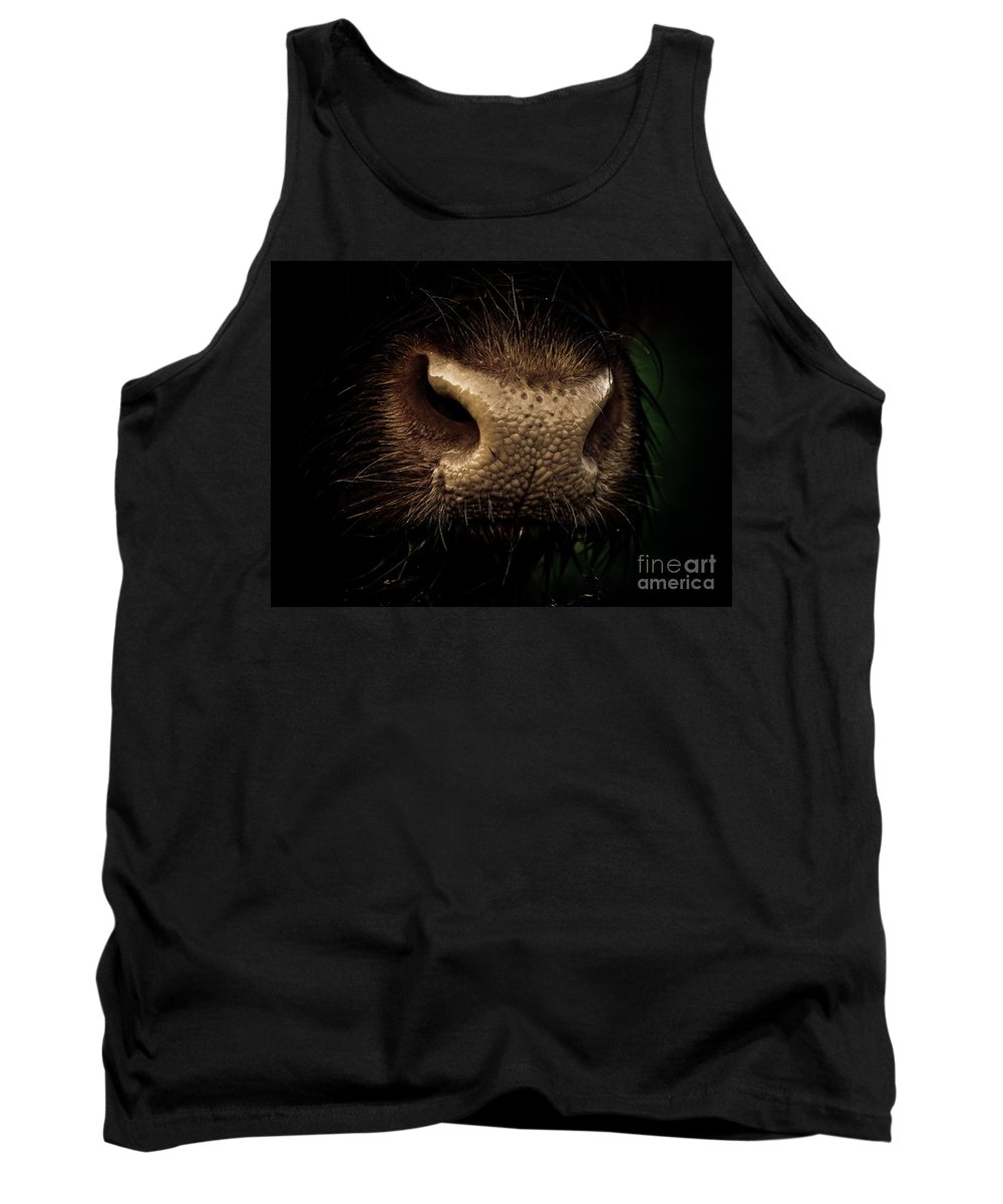 Boo Tank Top featuring the photograph Nosy by Brothers Beerens