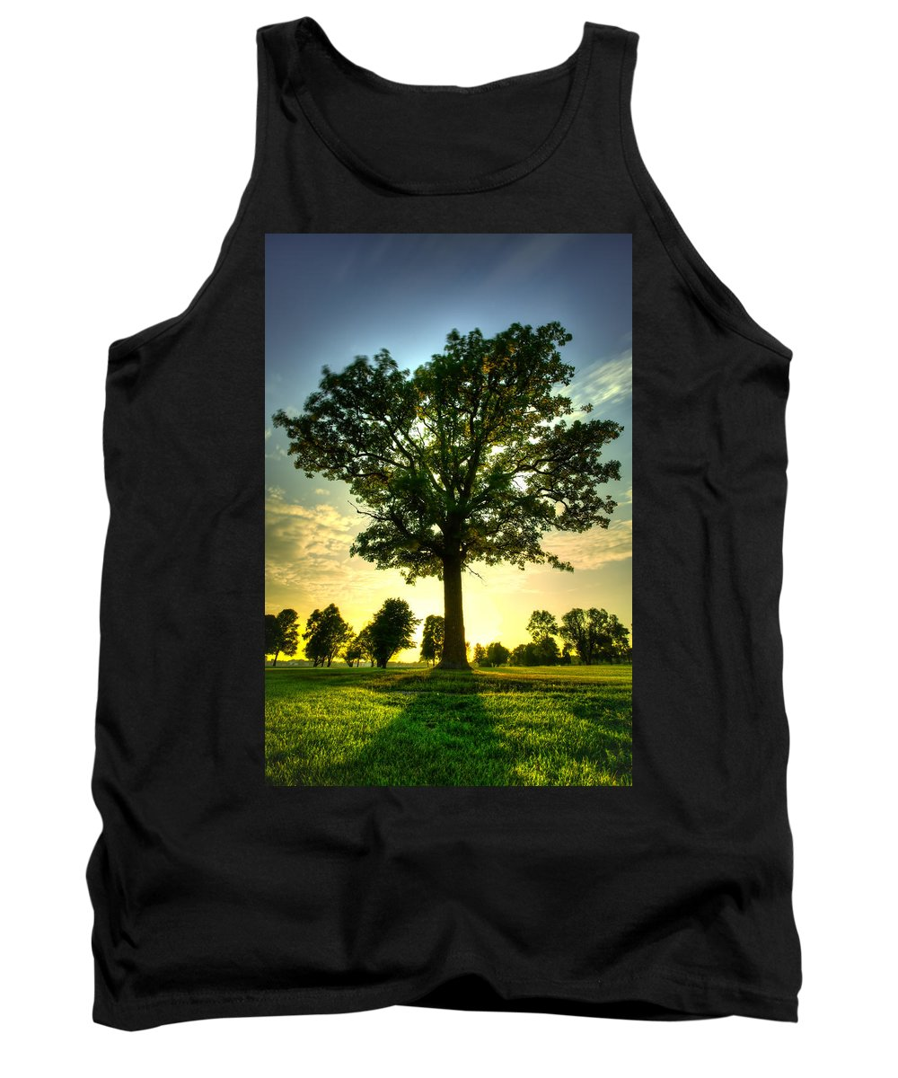 Blue Hour Tank Top featuring the photograph Oak Tree by Jakub Sisak