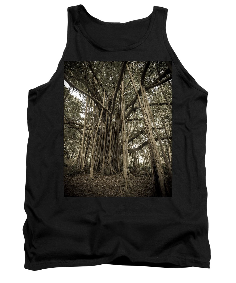 3scape Tank Top featuring the photograph Old Banyan Tree by Adam Romanowicz