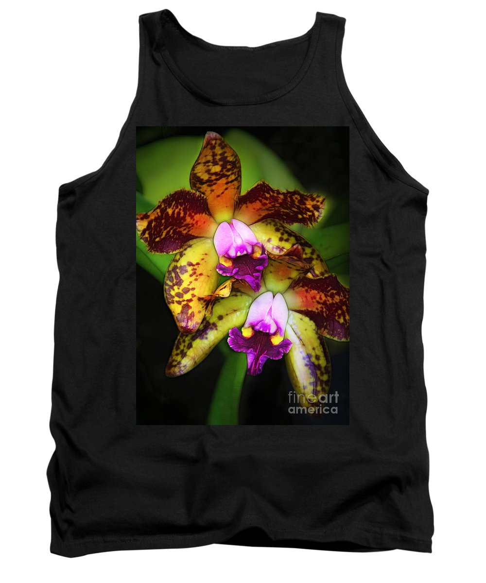 Orchids Tank Top featuring the photograph Orchid Elegance by Judi Bagwell
