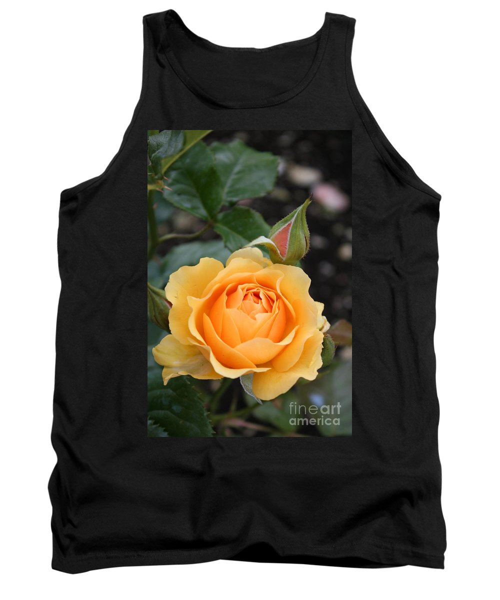 Rose Tank Top featuring the photograph Perfect Rose by Christiane Schulze Art And Photography