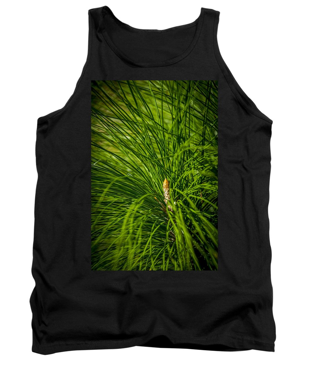 Pine Trees Tank Top featuring the photograph Pine Needles by Marvin Spates
