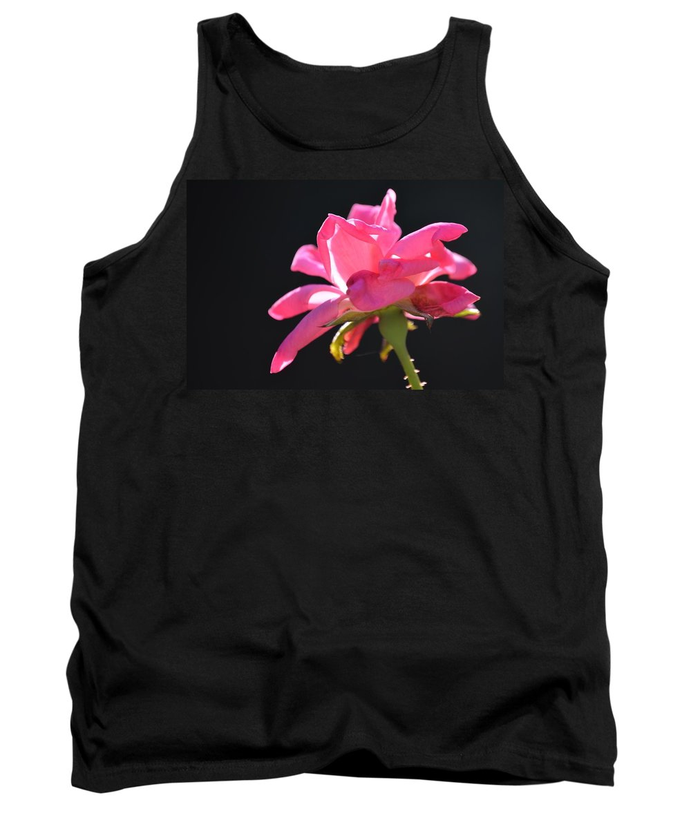 Flowers Tank Top featuring the photograph Pink Rose by Charles J Pfohl