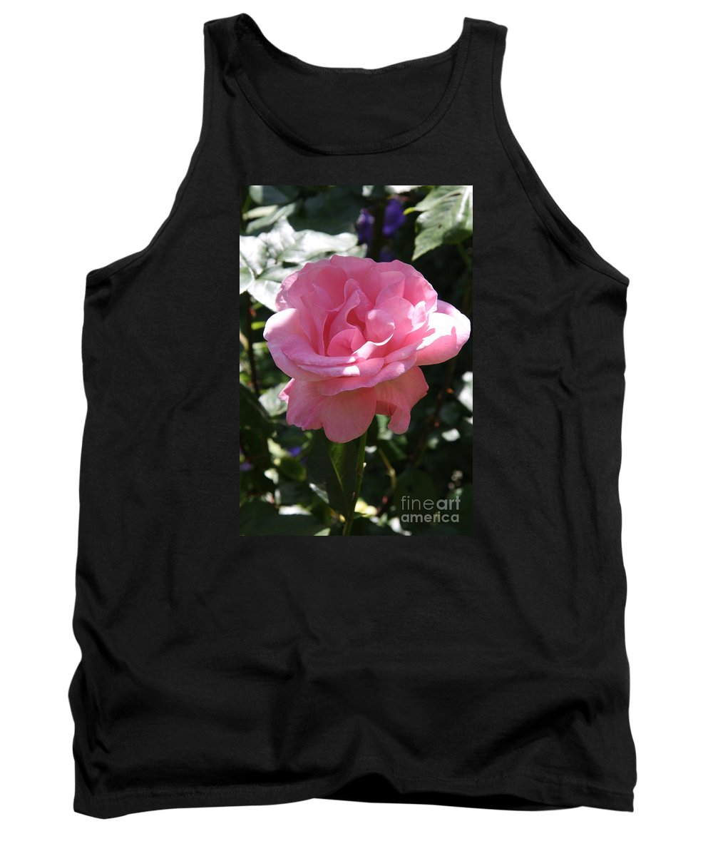 Rose Tank Top featuring the photograph Pink Rose by Christiane Schulze Art And Photography