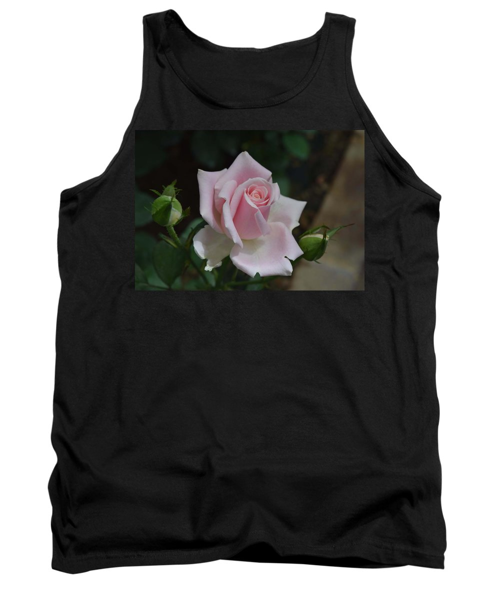 Roses Tank Top featuring the photograph Pink Rosebud by Chris Busch
