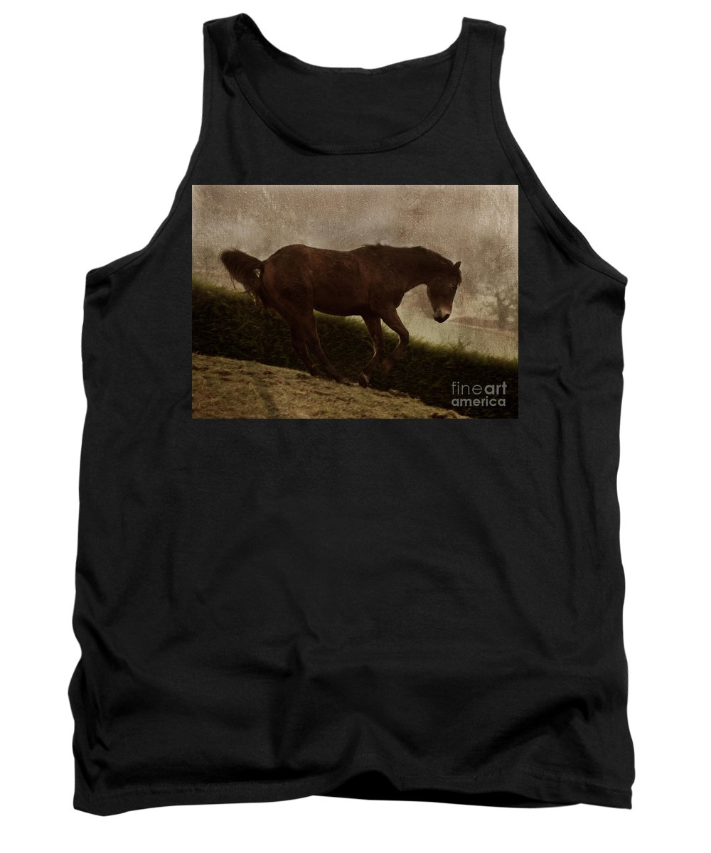 Prancing Horse Tank Top featuring the photograph Prancing Horse by Angel Ciesniarska