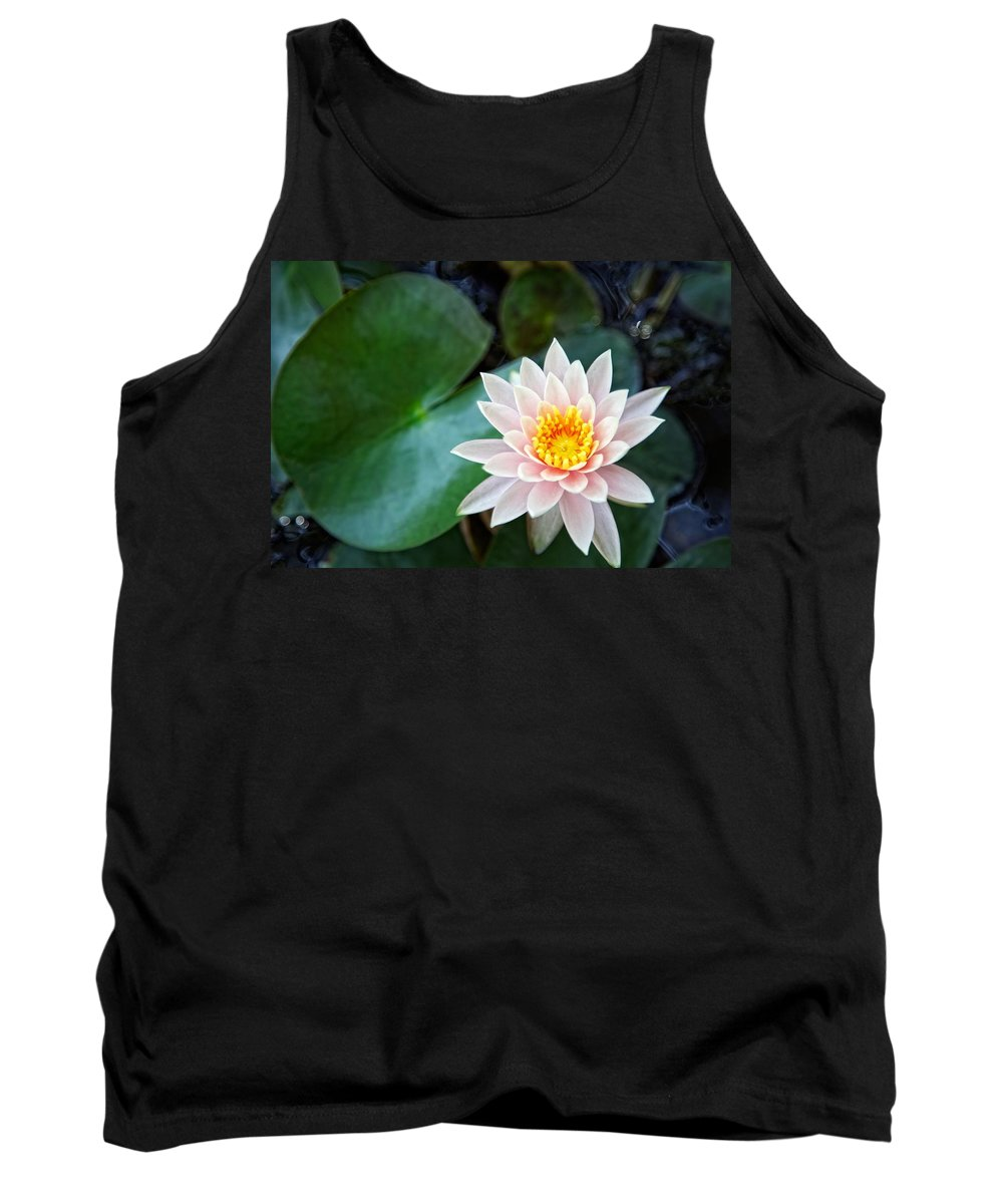 Aesthetic Tank Top featuring the photograph Pretty In Pink by Dave Files