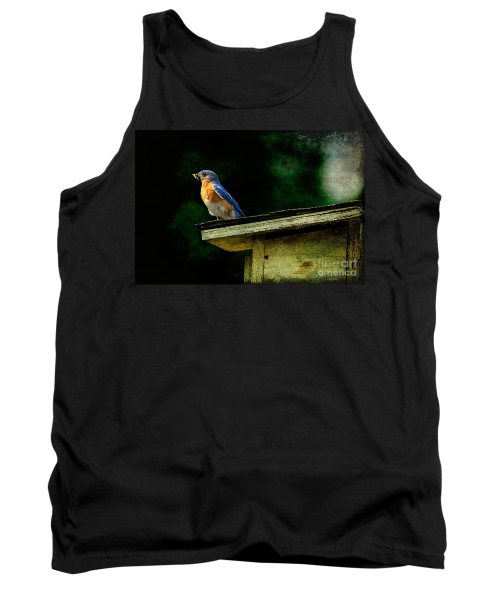 Lois Bryan Tank Top featuring the photograph Proud Provider by Lois Bryan