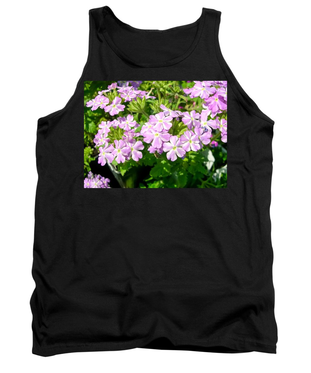 Purple And White Phlox Tank Top featuring the photograph Purple And White Phlox by Cynthia Woods
