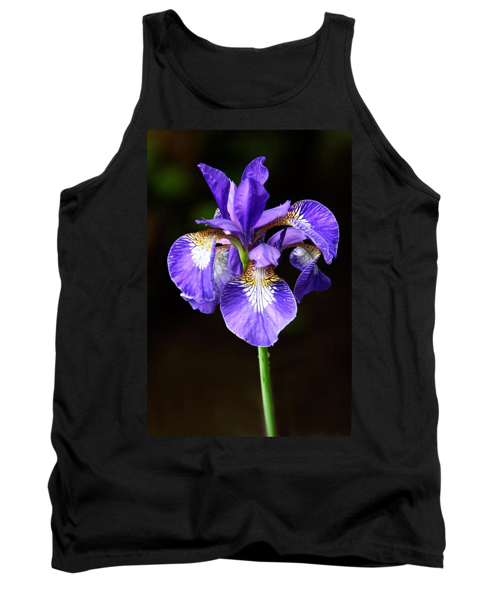 3scape Photos Tank Top featuring the photograph Purple Iris by Adam Romanowicz