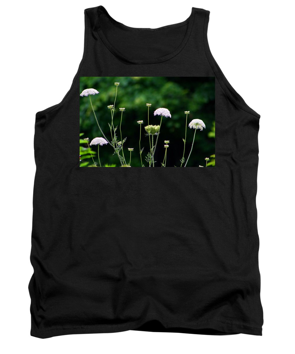 Queen Anne's Lace Tank Top featuring the photograph Queen Anne's Lace by Kathryn Meyer