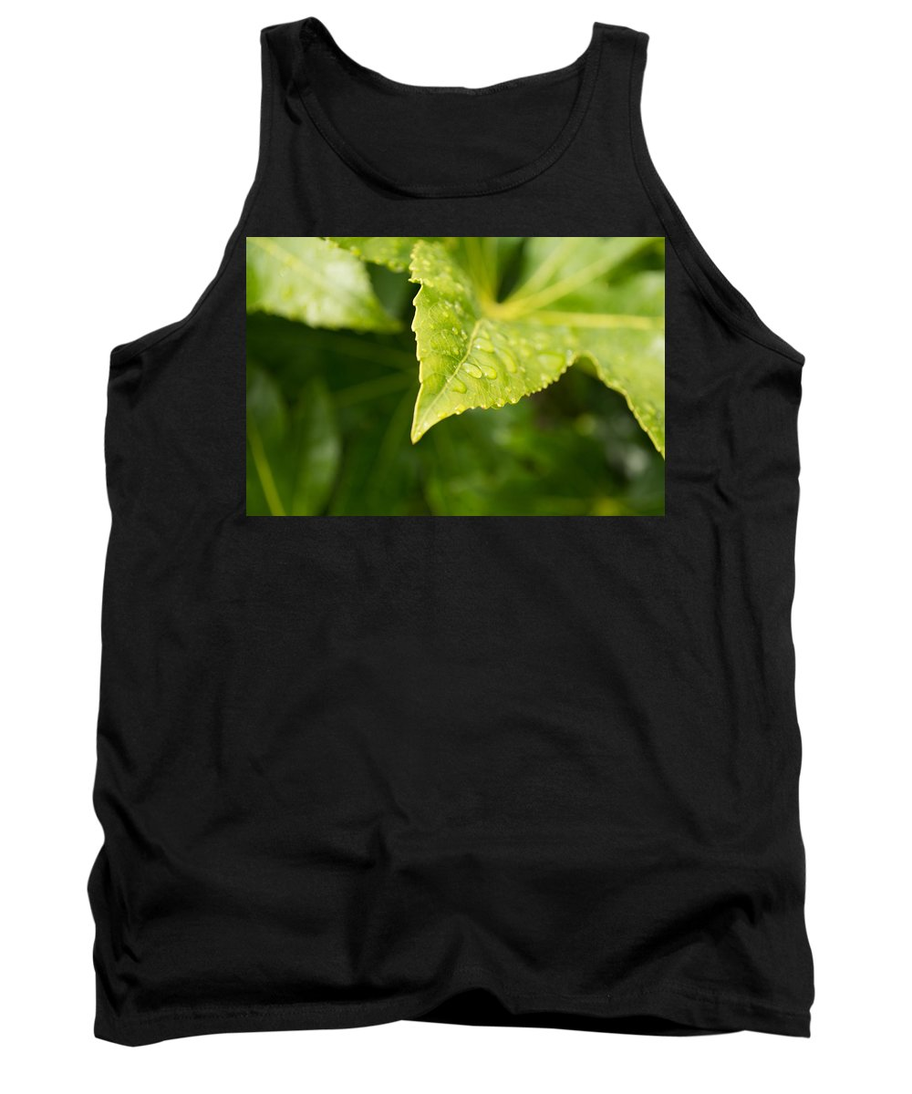 Leaf Tank Top featuring the photograph Raindrops by Mair Hunt