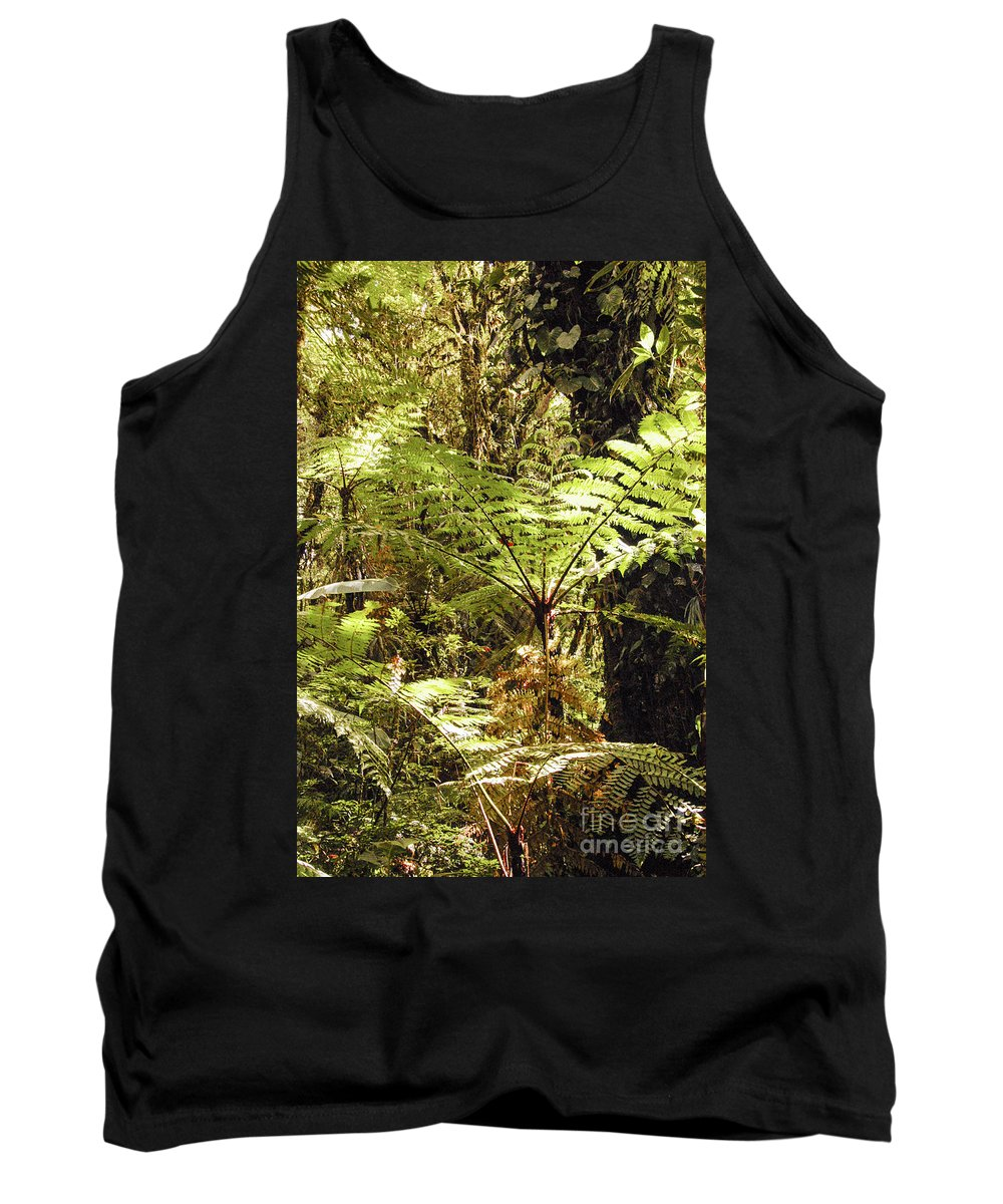 Santa Elena Reserve Monteverde Costa Rica Fern Ferns Tree Trees Branch Branches Leaves Leaves Plant Plants Nature Rainforest Forest Forests Rainforest Rainforests Tank Top featuring the photograph Rainforest Color by Bob Phillips