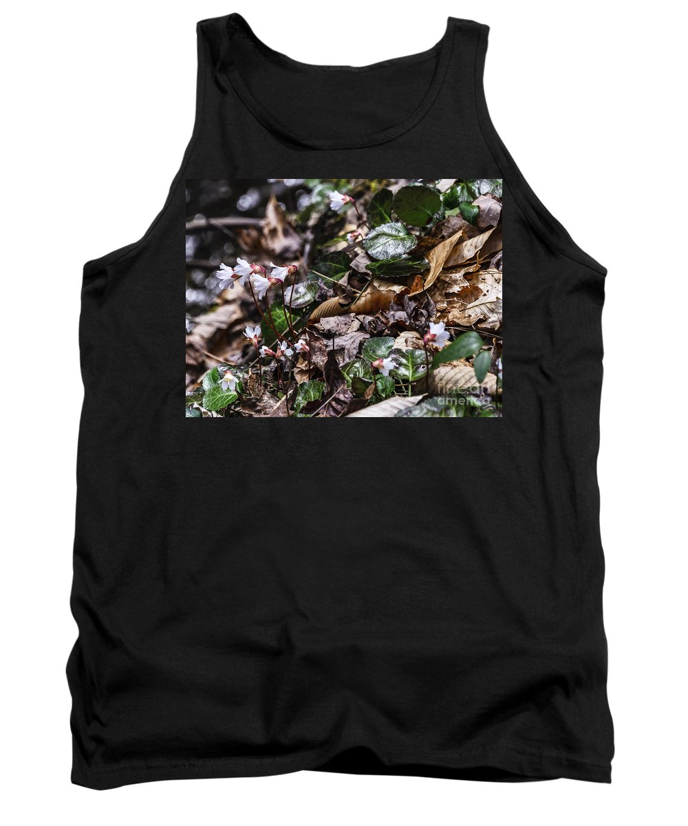 Oconee Bell Tank Top featuring the photograph Rare Spring Beauty by Elvis Vaughn