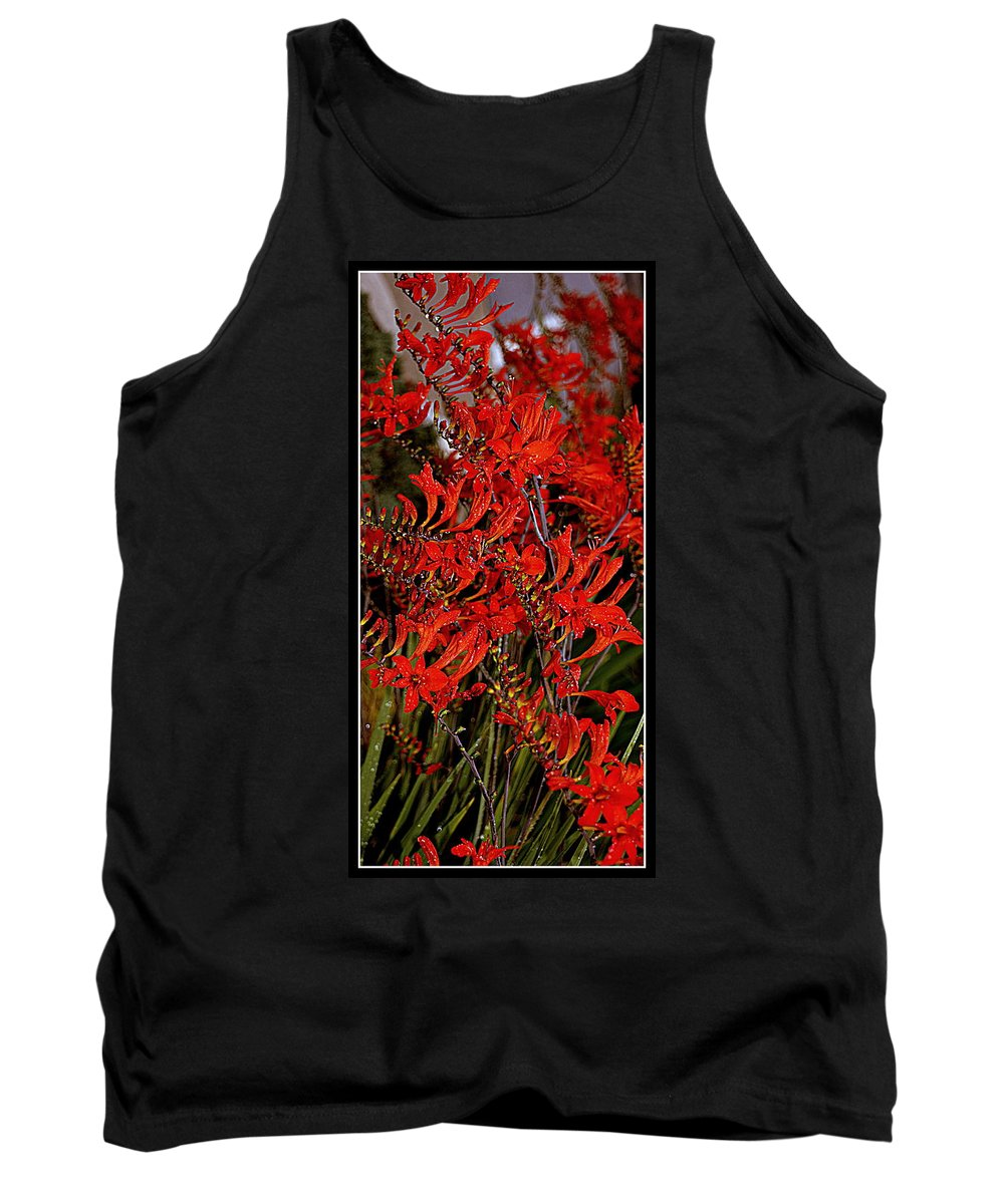 Flowers Tank Top featuring the photograph Red Devils Tongue Vine Vertical by Kathy Barney